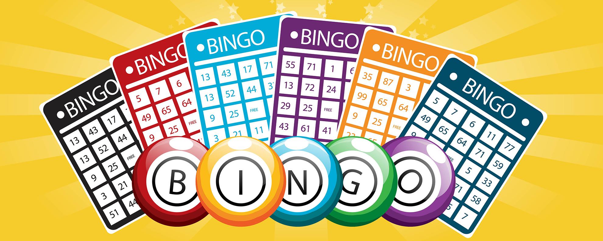 Bingo Hotline